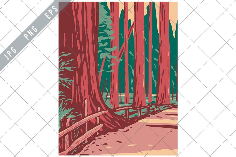 Redwoods in the Avenue of the Giants Humboldt Redwoods WPA example image 1