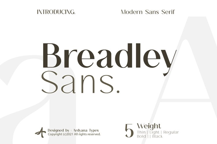 Breadley Sans example image 1