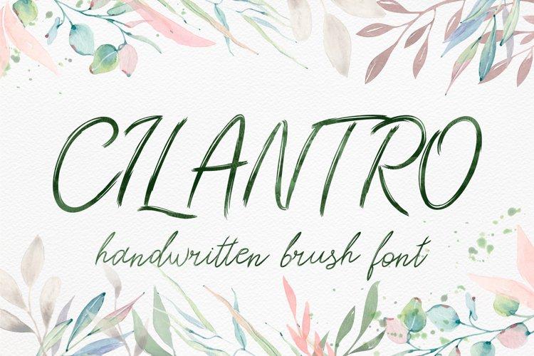 Cilantro - Scratched font