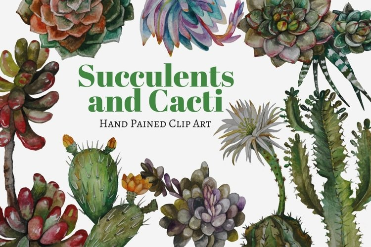 Succulents and Cacti Watercolor Clip Art Set example image 1