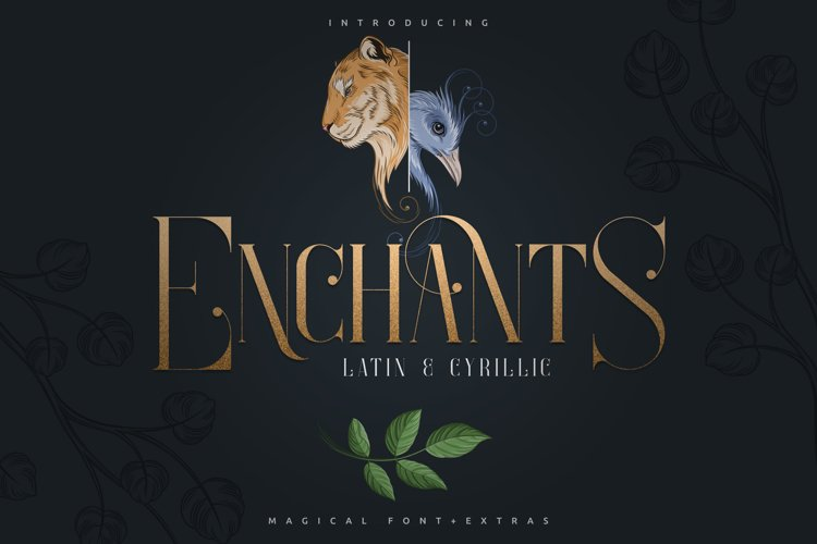 Enchants - Magical font - Extras