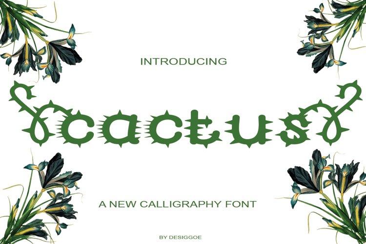 cactus example image 1