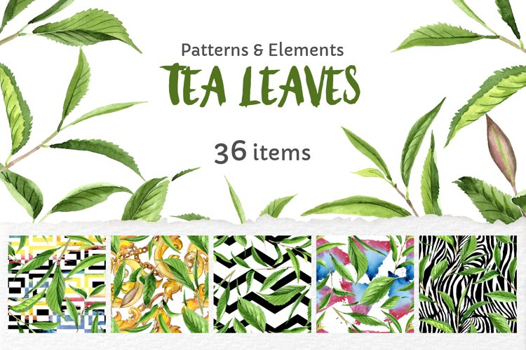 Green Tea Leaves Watercolor Png 356693 Illustrations Design Bundles
