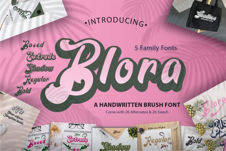 Blora Font Family example image 1