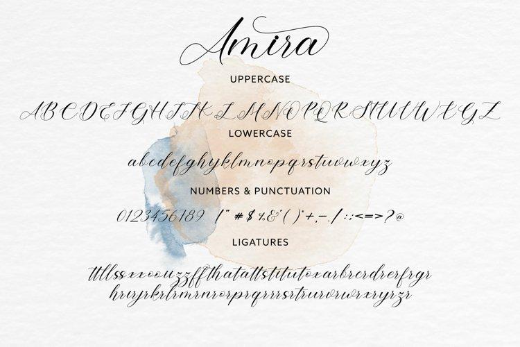Amira example 8