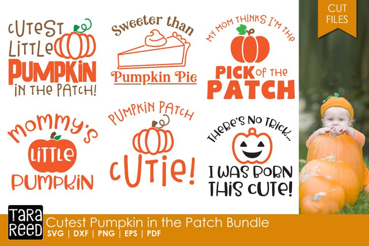 Cutest Pumpkin in the Patch Bundle example image 1