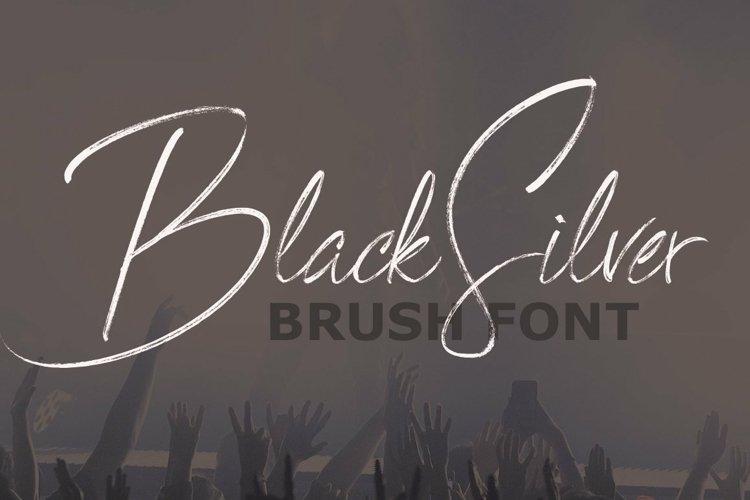 Web Font BlackSilver Brush Font example image 1