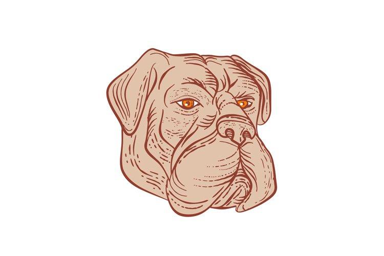 Bullmastiff Head Etching Color example image 1