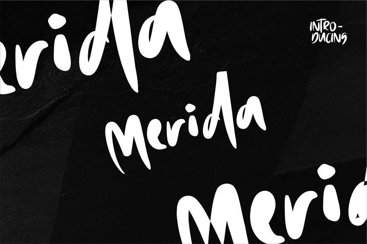 Merida - Display Font example image 1
