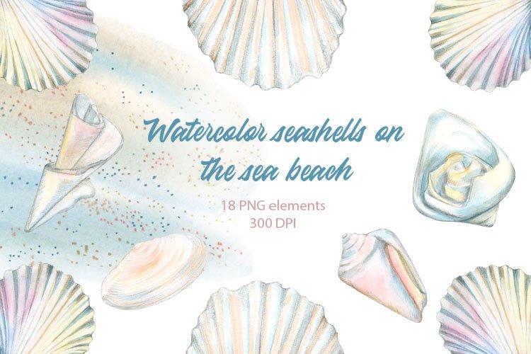 Watercolor seashell clipart. Sea beach. Summer