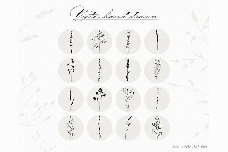 Botanical Clip art Floral Hand drawn vector elements. example image 1