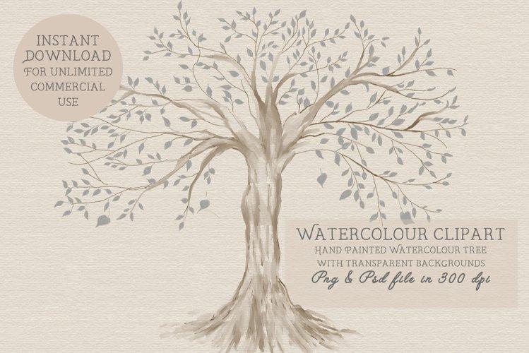 Family Tree, Tree, Trees, png clipart