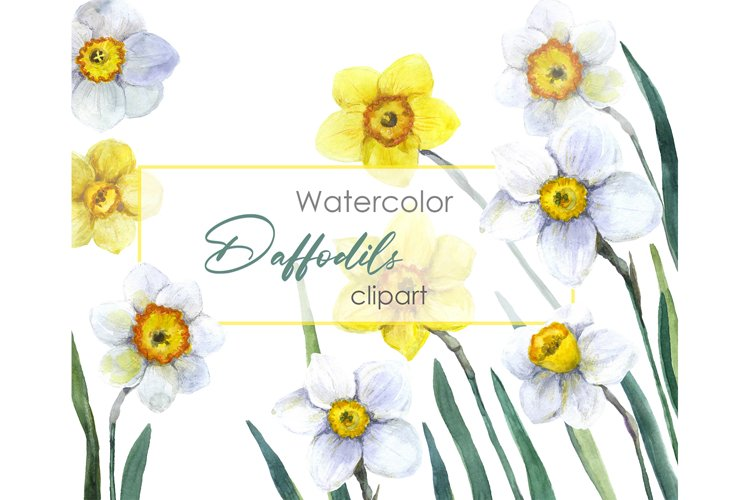 Watercolor clipart. Floral spring floral Digital flower
