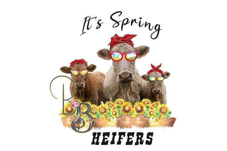 It's Spring Heifers PNG example image 1