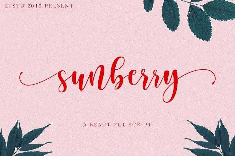 Sunberry | Beautiful Script example image 1