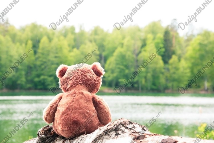 A teddy bear sits by a forest lake. A summer picnic. example image 1