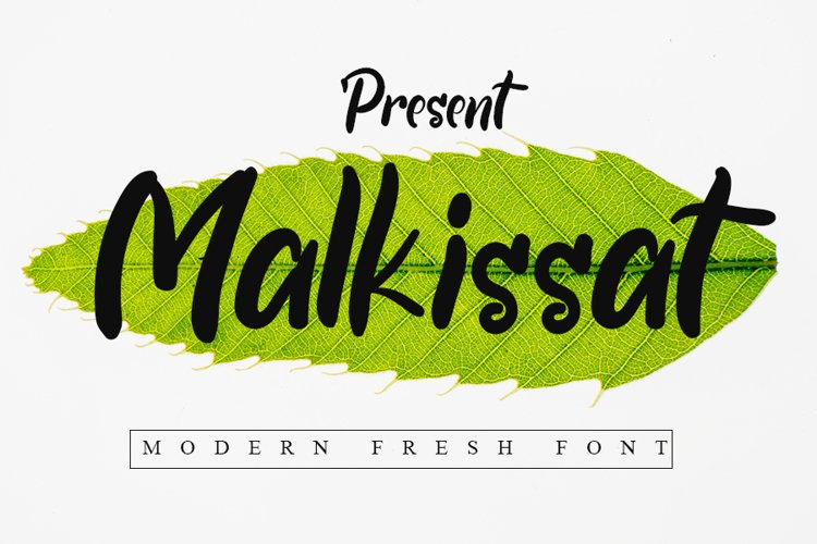 Malkissat example image 1