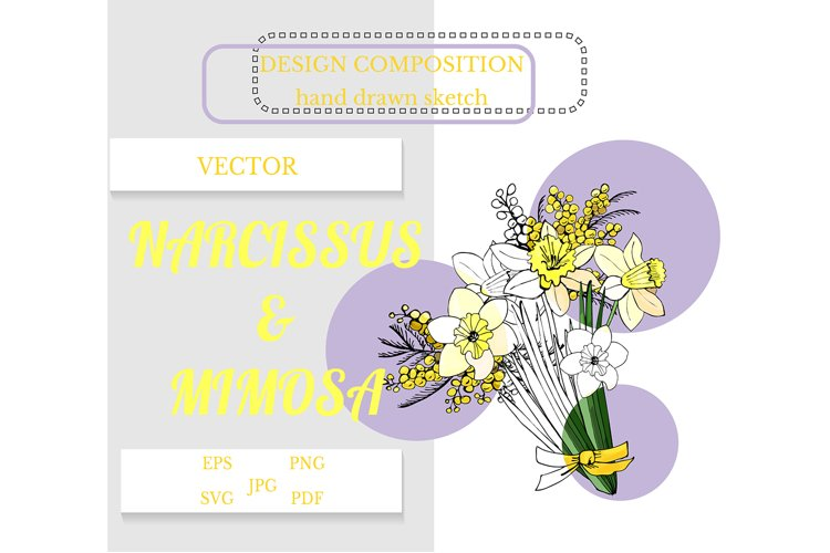 Hand drawn sketch of narcissus and mimosa flowers. example image 1