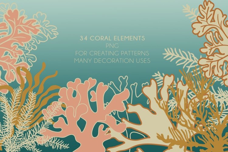 34 Coral Elements PNG - Collection