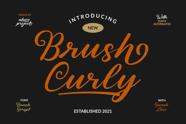 Brush Curly example image 1