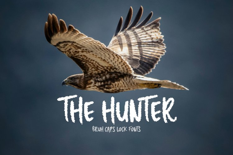 The Hunter example image 1