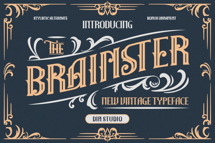 The Brainster - Display Font example image 1