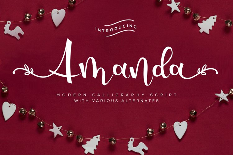 Amanda - Modern Calligraphy Script example image 1