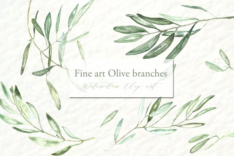 Olive branches. Watercolor clipart. example image 1