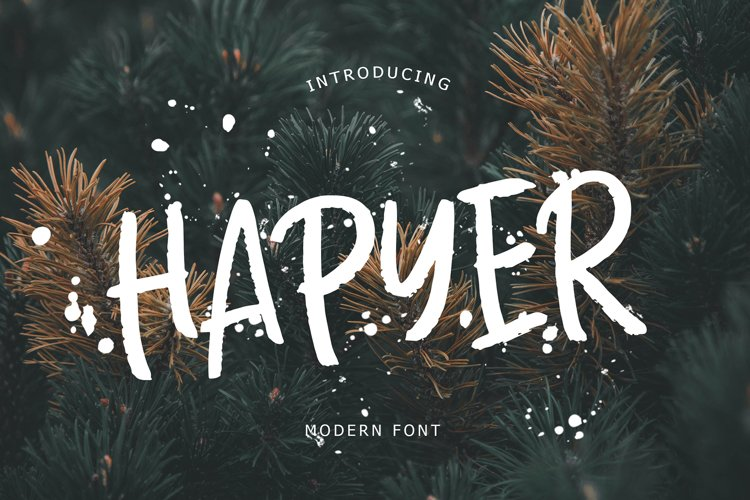 Hapyer Modern Font example image 1