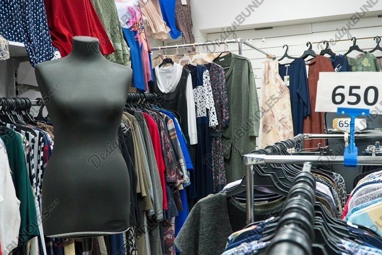 Female mannequin in a clothing store example image 1
