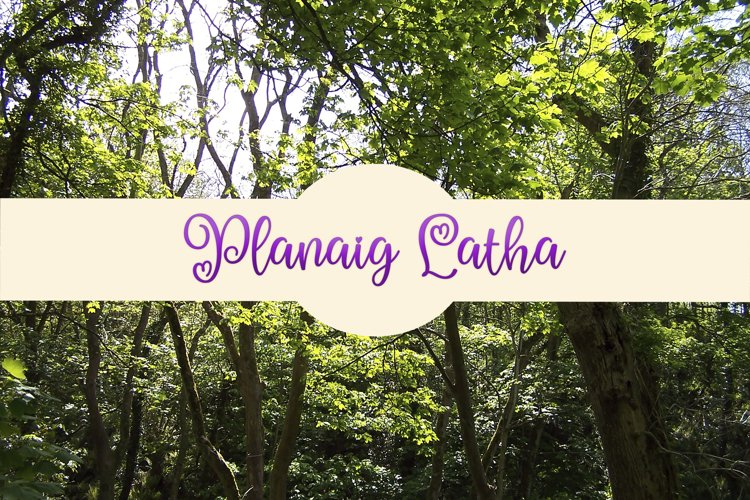 Woodland Background example image 1