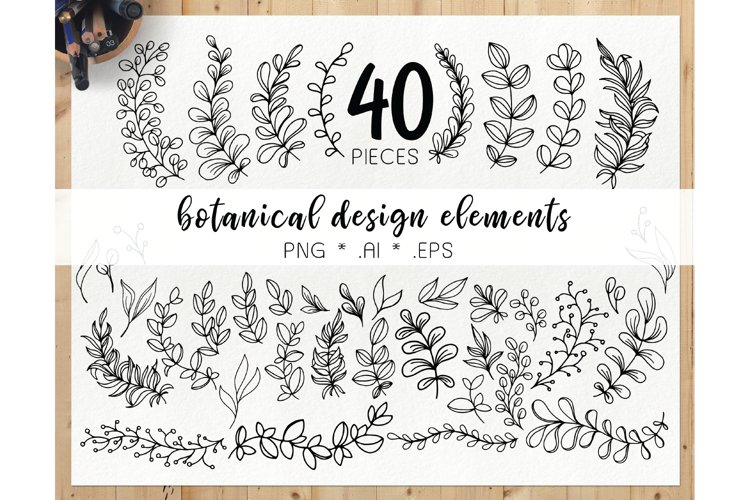 Hand drawn botanical elements - doodle leaves clipart example image 1