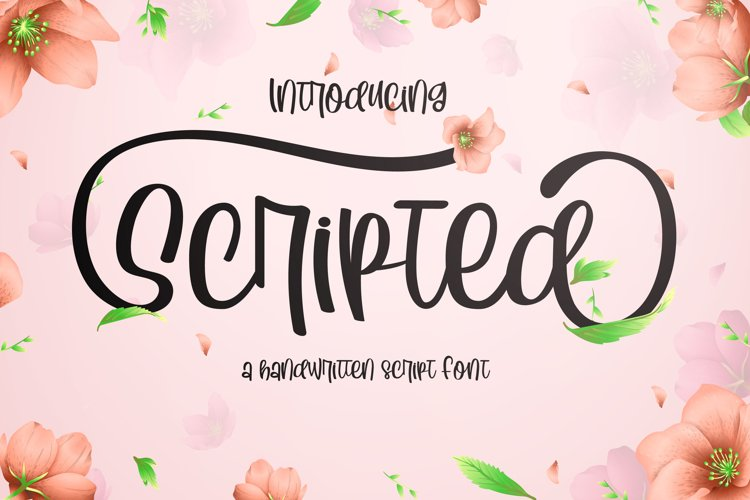 Scripted Handwritting Font example image 1