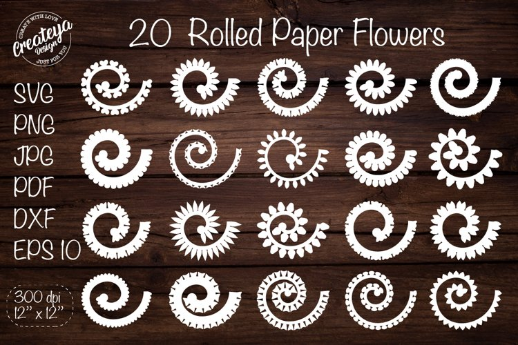 Rolled flowers. Rolled flowers SVG. Rolled Paper flowers