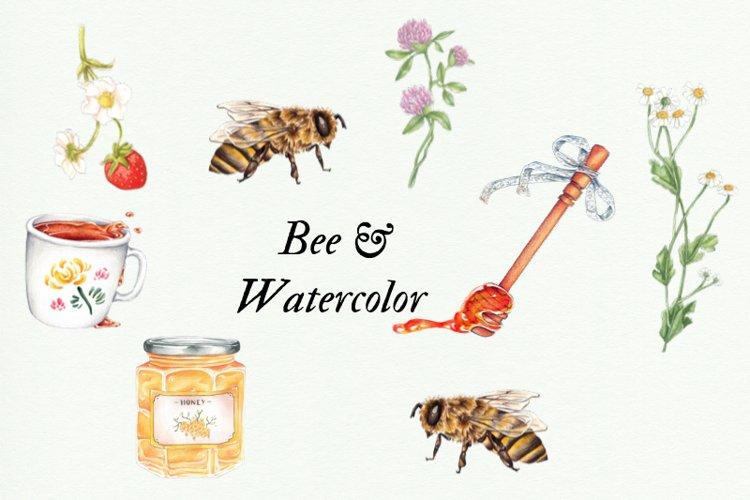 Watercolor Honey Clipart, Handpainted Bee Illustrations