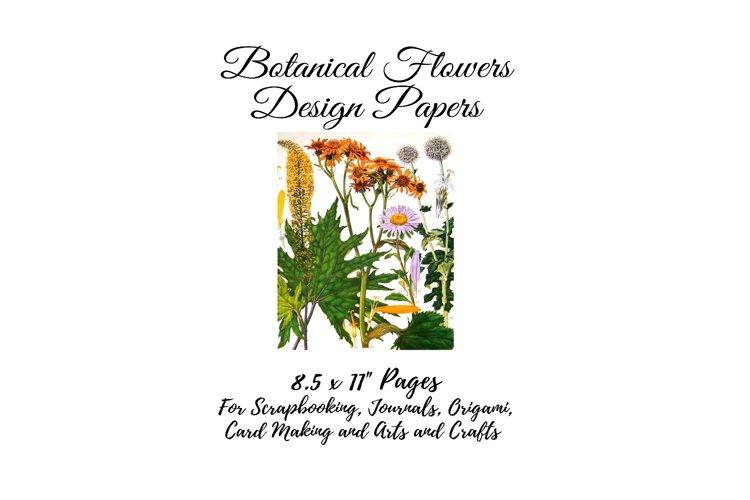 Vintage Botanical Full Page Floral Sheets 8.5 x 11, PDF