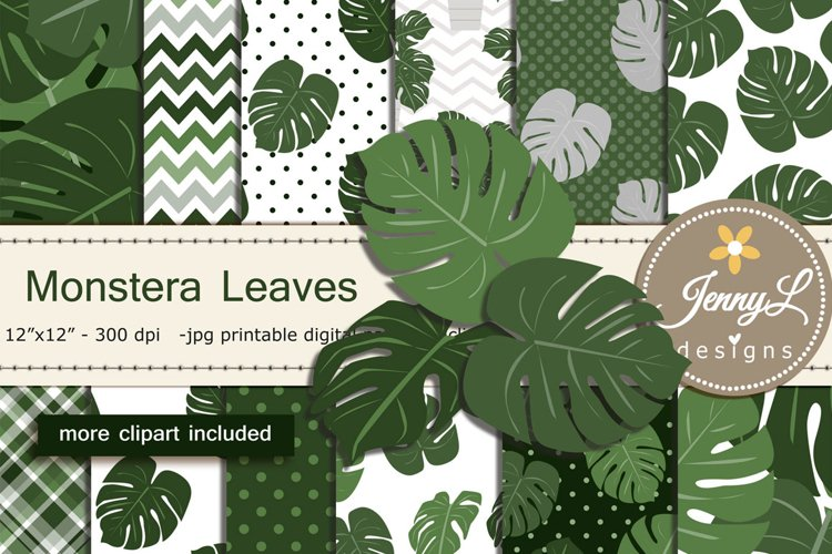 Monstera Leaves Plant Digital Paper and Clipart example image 1
