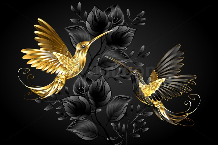 Black and Gold Hummingbird