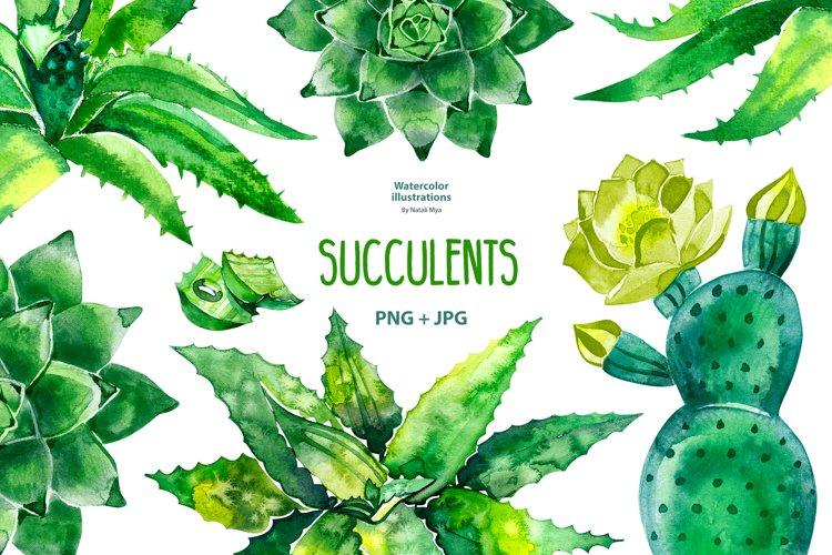 Watercolor succulents set example image 1