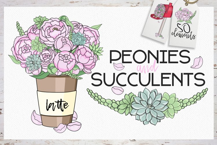 Peonies and Succulents example image 1