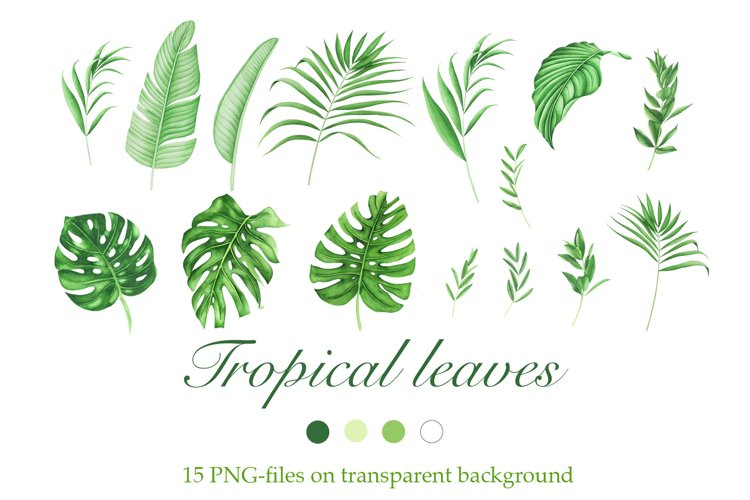Watercolor Tropical Leaves Clipart