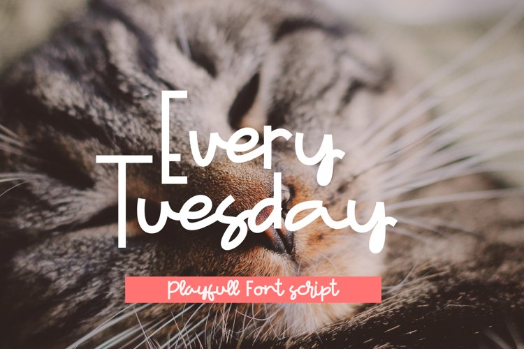 Every Tuesday example image 1