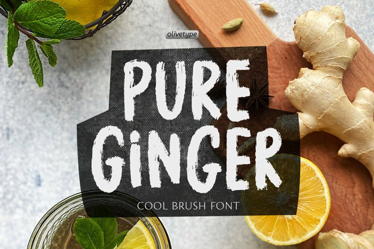 Pure Ginger - A Cool Brush Font example image 1