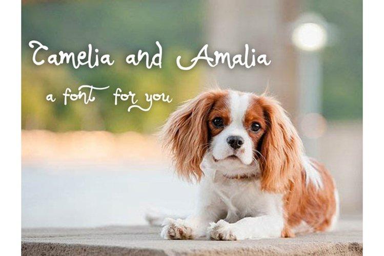 Camalia Girly Typeface example image 1