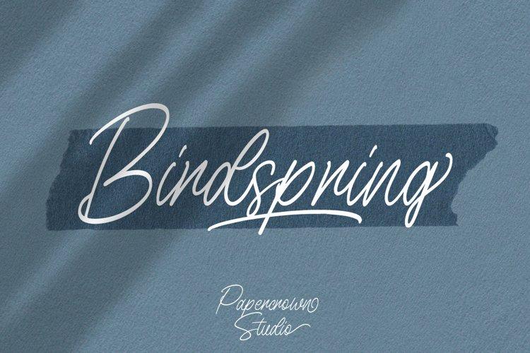 Birdspring Signature example image 1