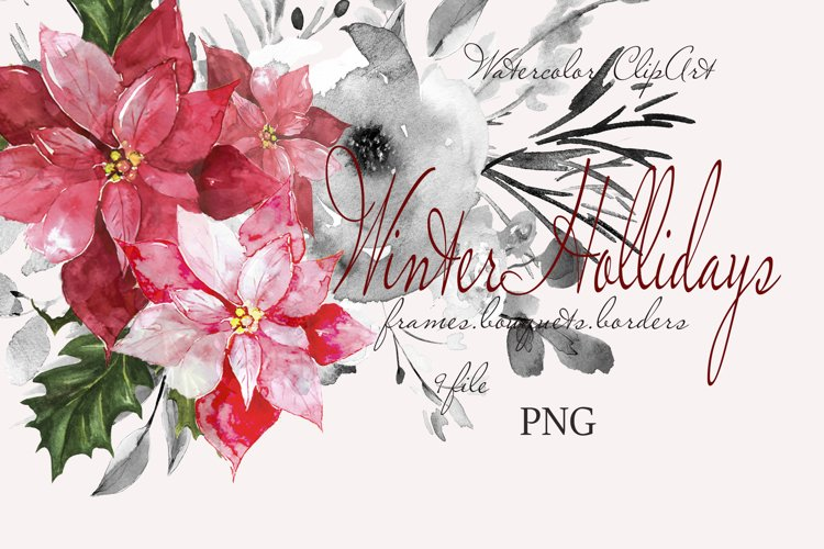 CHRISTMAS FLORAL Pointeness watercolor clipart example image 1
