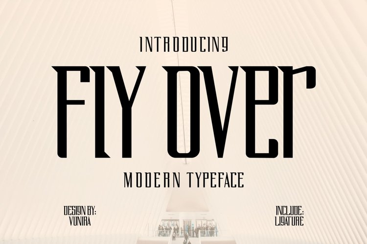 Fly Over | Modern Typeface Font example image 1