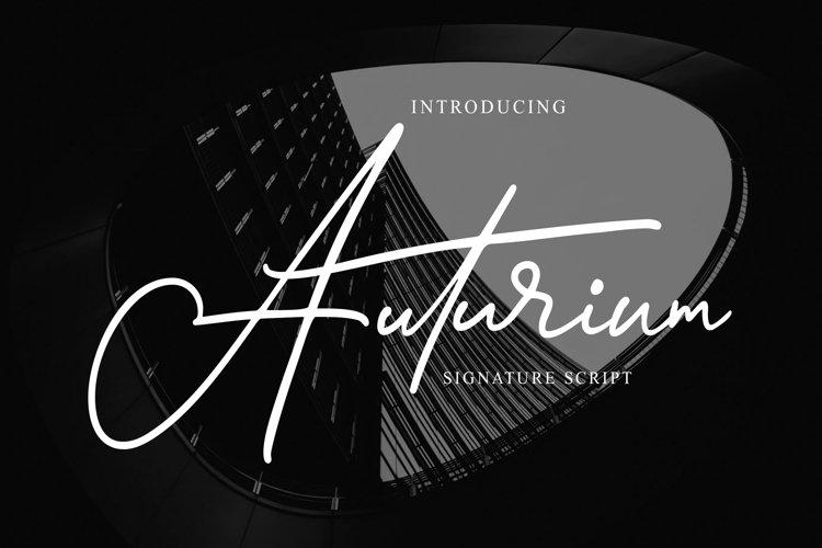 Auturium - Signature Script example image 1