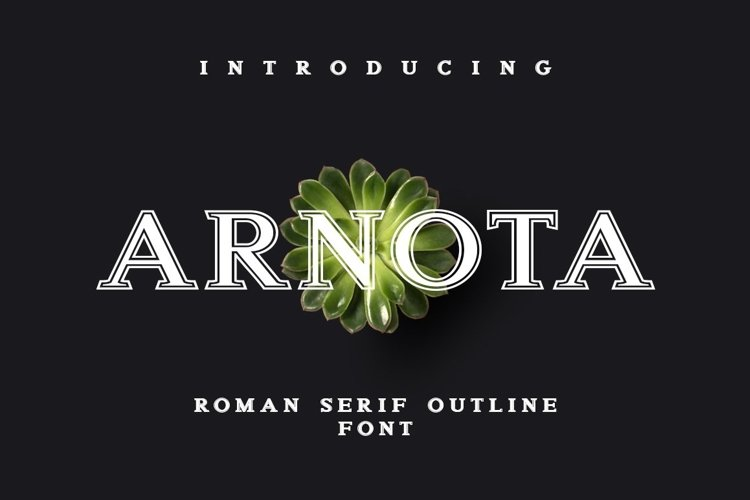 Web Font Arnota example image 1