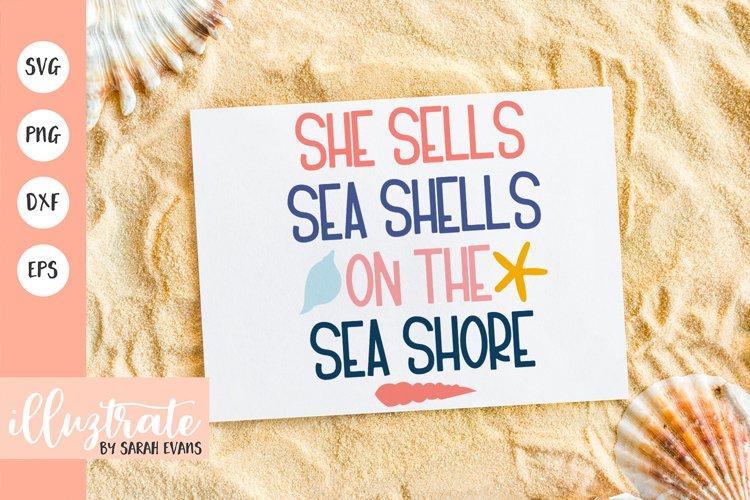 Sea Shells SVG Cut File   Shells SVG   Summer SVG Beach SVG